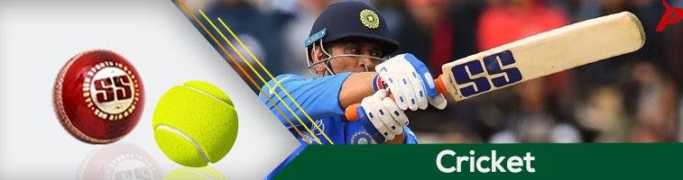 Buy Cricket bats, balls, pads, gloves, protective gear, accessories, practice
